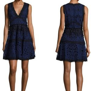 Alexis Bridget Lace Fit and Flare Dress